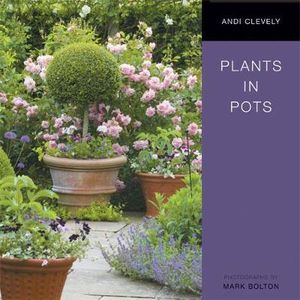 Plants in Pots - Andi Clevely
