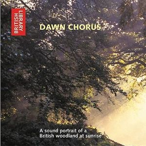 Dawn Chorus : A Sound Portrait of a British Woodland at Sunrise - British Library