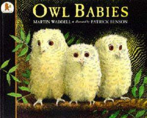 Owl Babies : Big Book - Martin Waddell