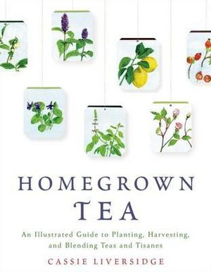 Homegrown Tea : An Illustrated Guide to Planting, Harvesting, and Blending Teas and Tisanes - Cassie Liversidge