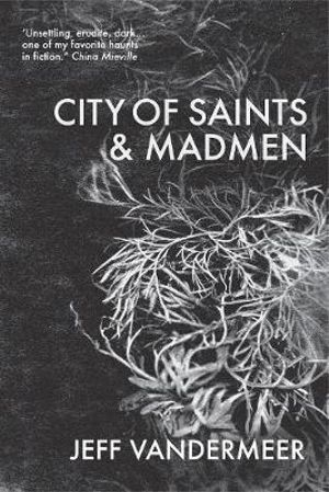 City of Saints & Madmen - Jeff VanderMeer