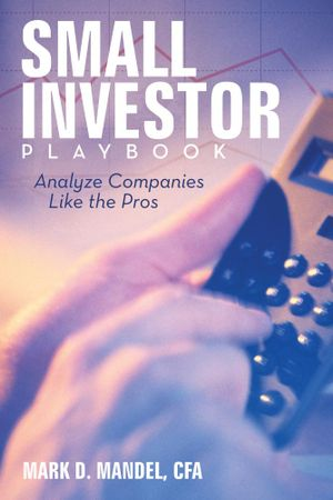 Small Investor Playbook : Analyze Companies Like the Pros - Mark D. Mandel CFA