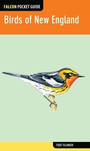 Falcon Pocket Guide : Birds of New England - Todd Telander