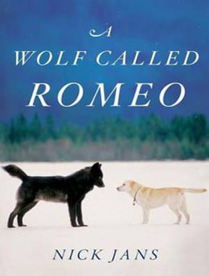 A Wolf Called Romeo (Library Edition) - Nick Jans