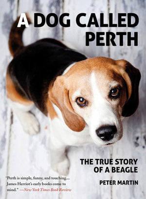A Dog Called Perth : The True Story of a Beagle - Peter Martin