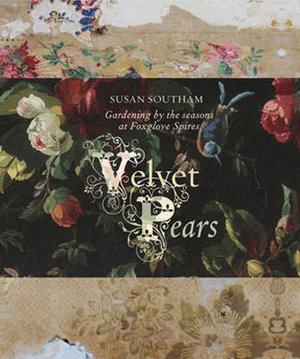 Velvet Pears - Susan Southam