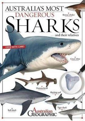 Australia s most dangerous sharks kathy riley