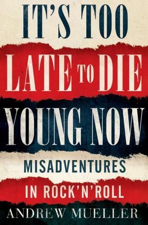 It's Too Late to Die Young Now : Misadventures in Rock 'n' Roll - Andrew Mueller