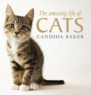 The Amazing Life of Cats - Candida Baker