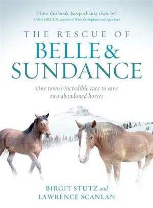The Rescue of Belle and Sundance : One Town's Incredible Race to Save Two Abandoned Horses - Birgit Stutz