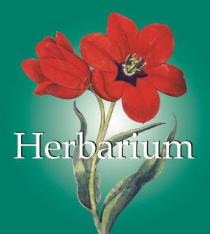 Herbarium : Mega Square - Parkstone Press