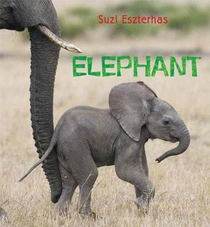 Elephant : Eye on the Wild - Suzi Eszterhas