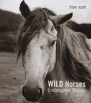Wild Horses : Endangered Beauty - Traer Scott