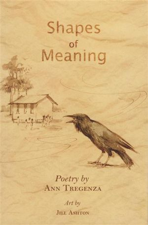 Shapes of Meaning - Ann Tregenza