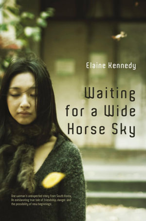 Waiting for a Wide Horse Sky - Elaine Kennedy