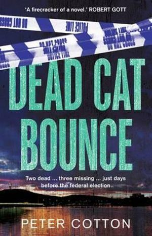 Dead Cat Bounce - Peter Cotton