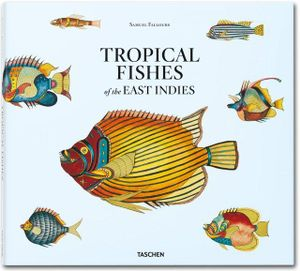 Samuel Fallours : Tropical Fishes of the East Indies - Theodore W. Pietsch