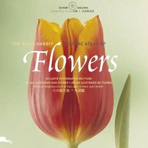 Flowers : With CD-ROM - Pepin Press