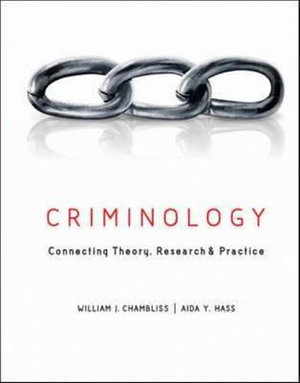 Cover of Criminology: Connecting Theory, Research, and Practice