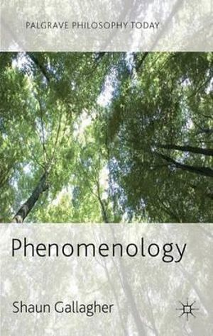 Cover of Phenomenology