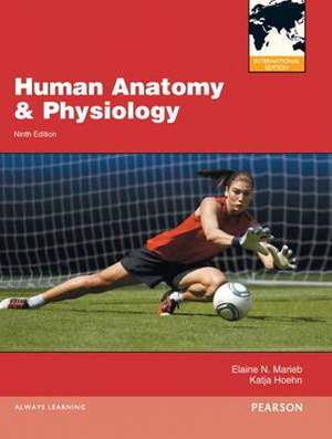 Cover of Human Anatomy and Physiology