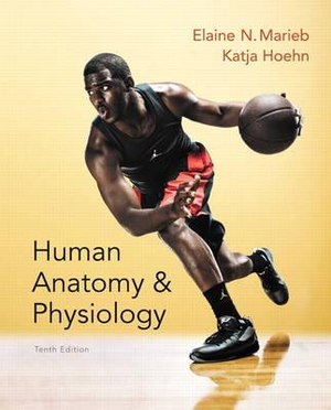 Cover of Human Anatomy & Physiology