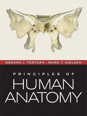 Cover of Principles of Human Anatomy 12E