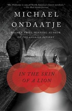 Cover of In the Skin of a Lion