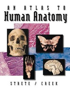 Cover of An Atlas To Human Anatomy by Strete/Creek