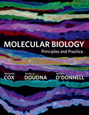 Cover of Molecular Biology