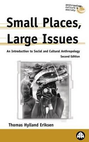 Cover of Small Places, Large Issues - Second Edition
