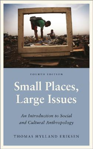 Cover of Small Places, Large Issues