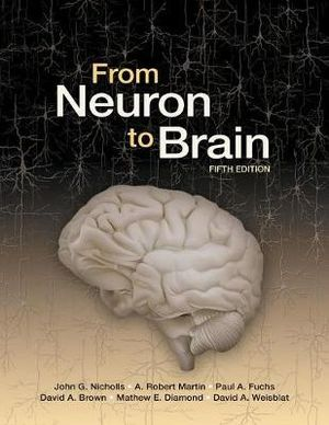 Cover of From Neuron to Brain