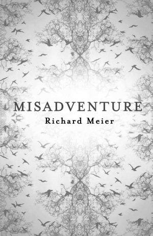 Cover of Misadventure