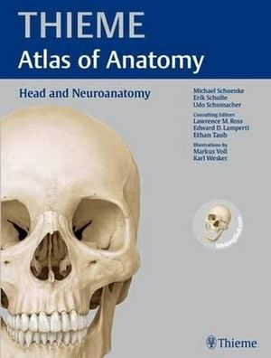Cover of Head and Neuroanatomy