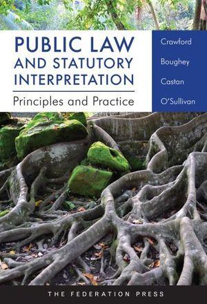 Cover of Public Law and Statutory Interpretation